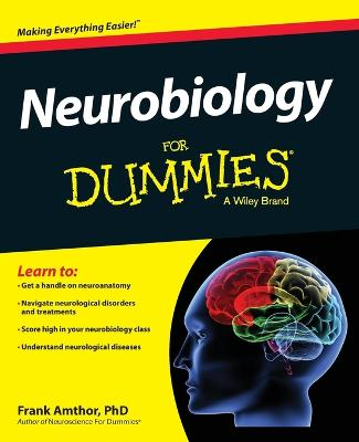 Neurobiology For Dummies by Frank Amthor
