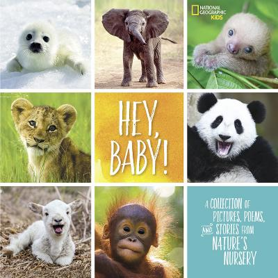 Hey, Baby! by Stephanie Warren Drimmer