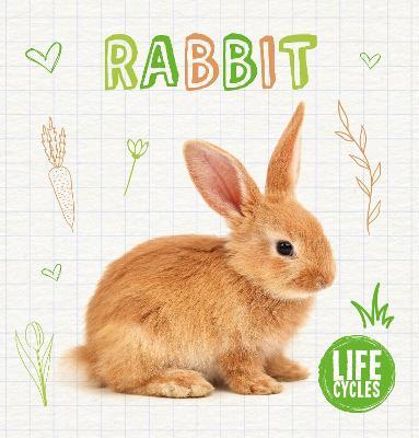 Rabbit by Shalini Vallepur