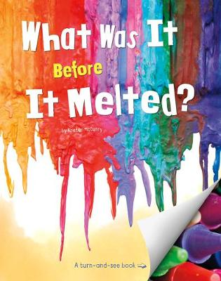 What Was It Before It Melted? book