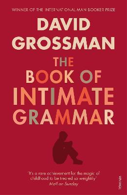 The Book Of Intimate Grammar by David Grossman