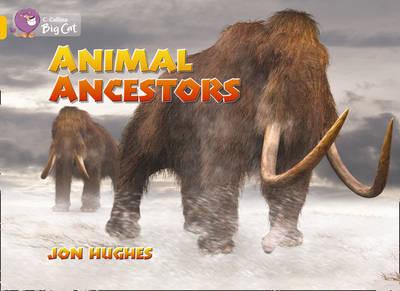 Animal Ancestors by Jon Hughes