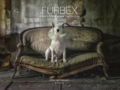 Furbex: A Dog's Life of Urban Exploration by Alice van Kempen