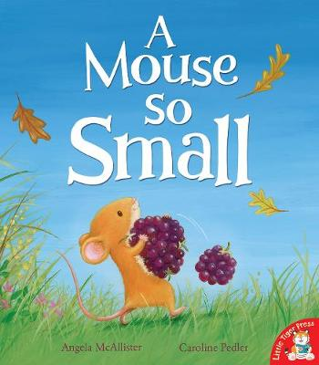 A Mouse So Small by Angela McAllister