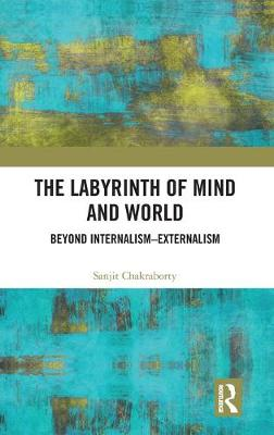 The Labyrinth of Mind and World: Beyond Internalism-Externalism book