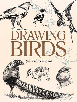 Drawing Birds book