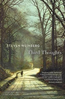 Third Thoughts by Steven Weinberg