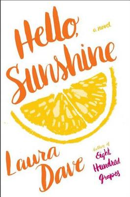 Hello, Sunshine by Laura Dave