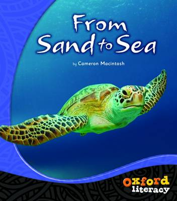 Oxford Literacy From Sand to Sea: Non-fiction Levels 15-17 by Cameron Macintosh