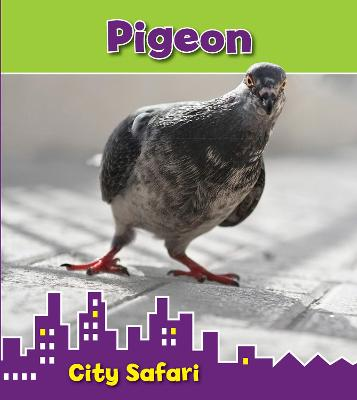 Pigeon by Isabel Thomas