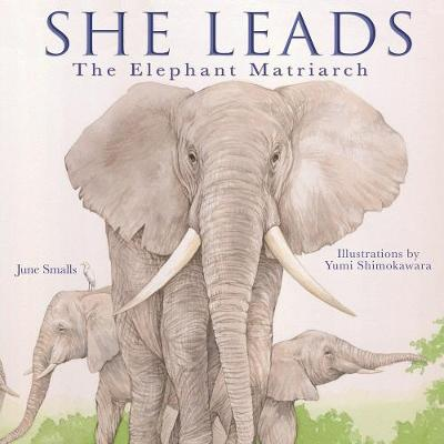 She Leads: The Elephant Matriarch by June Smalls