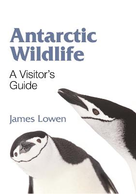 Antarctic Wildlife - A Visitor`s Guide by James Lowen