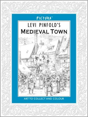 Pictura: Medieval Town by Levi Pinfold