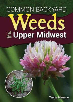 Common Backyard Weeds of the Upper Midwest by Teresa Marrone