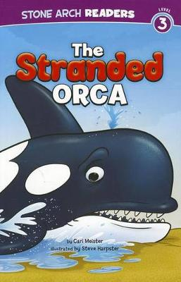 The Stranded Orca by Cari Meister