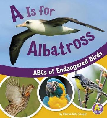 A is for Albatross book