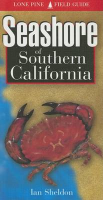 Seashore of Southern California by Ian Sheldon