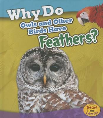 Why Do Owls and Other Birds Have Feathers? by Holly Beaumont