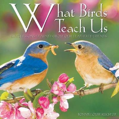 What Birds Teach Us by Kuchler Bonnie Louise