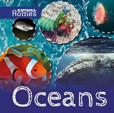 Oceans by Holly Duhig