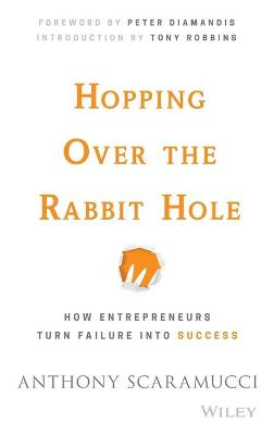 Hopping over the Rabbit Hole book