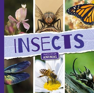 Insects by Emilie Dufresne
