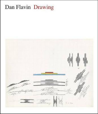 Dan Flavin by Isabelle Dervaux
