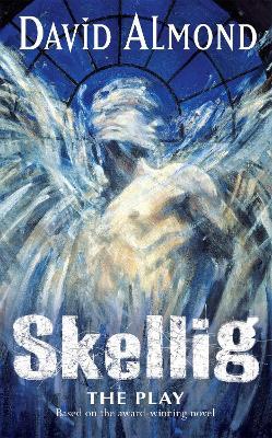 Skellig book