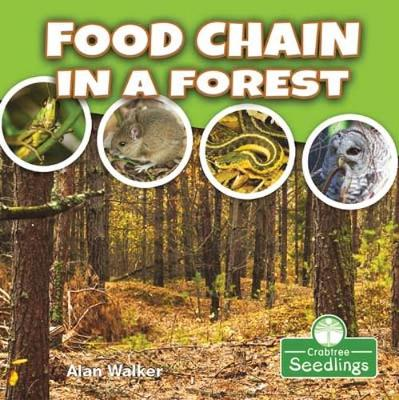 Food Chain in a Forest by Alan Walker