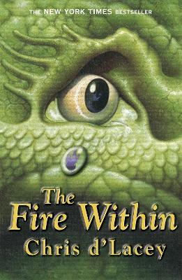 Last Dragon Chronicles: The Fire Within book
