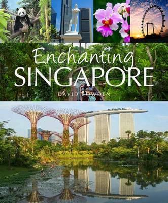 Enchanting Singapore by David Bowden
