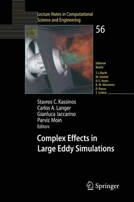 Complex Effects in Large Eddy Simulations by Stavros Kassinos