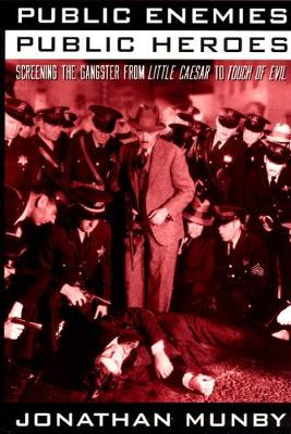 Public Enemies, Public Heroes book