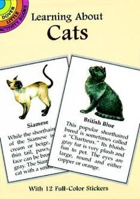 Learning About Cats by Steven James Petruccio