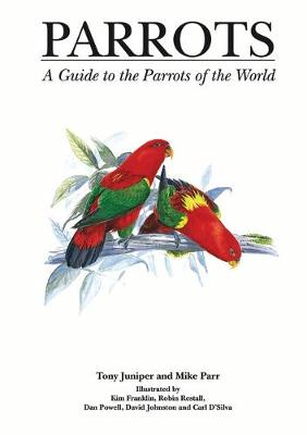 Parrots by Mike Parr