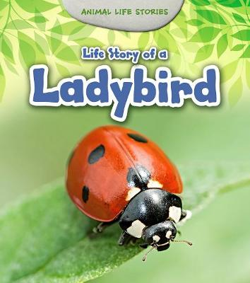 Life Story of a Ladybird by Charlotte Guillain