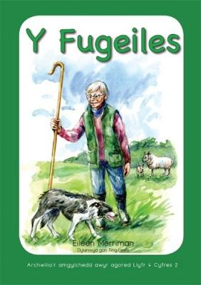 Archwilio'r Amgylchedd Awyr Agored yn y Cyfnod Sylfaen - Cyfres 2: Fugeiles, Y by Eileen Merriman