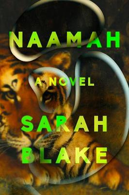 Naamah: A Novel by Sarah Blake