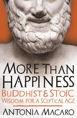 More Than Happiness by Antonia Macaro