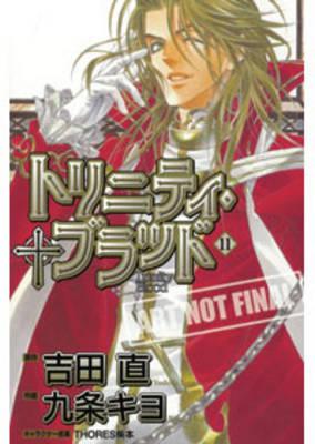 Trinity Blood: v. 11 book