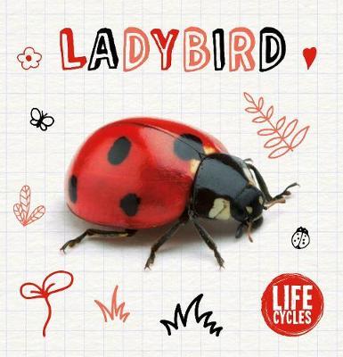 Ladybird by Shalini Vallepur