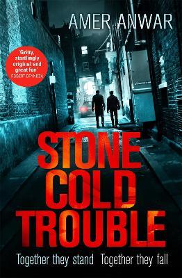 Stone Cold Trouble book