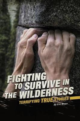 In The Wilderness book