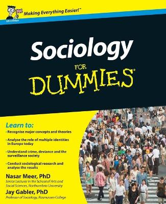 Sociology For Dummies by Jay Gabler