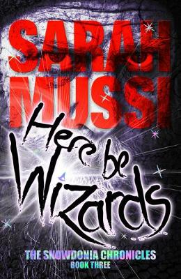 Here be Wizards: The Snowdonia Chronicles: Book Three by Sarah Mussi