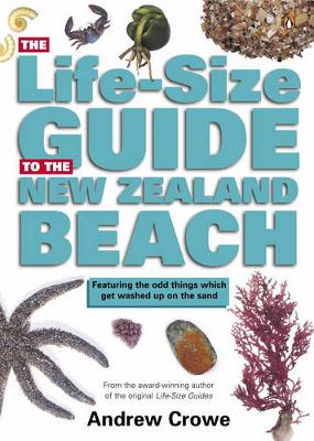 Life-Size Guide to the New Zealand Beach by Andrew Crowe