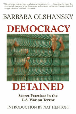 Democracy Detained by Barbara Olshansky