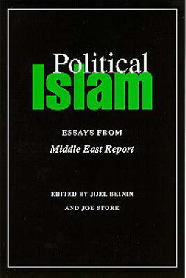 Political Islam by Joel Beinin