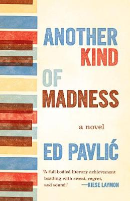 Another Kind of Madness: A Novel by Ed Pavlic