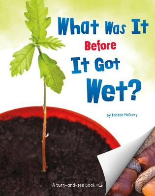 What Was It Before It Got Wet? by Kristen Mccurry